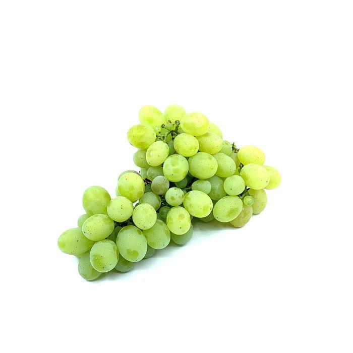 grozde-bijelo-000121_1.jpg